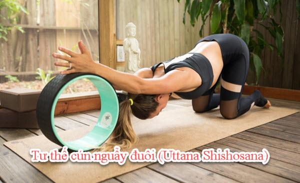 Tư thế cún nguẩy đuôi (Uttana Shishosana)